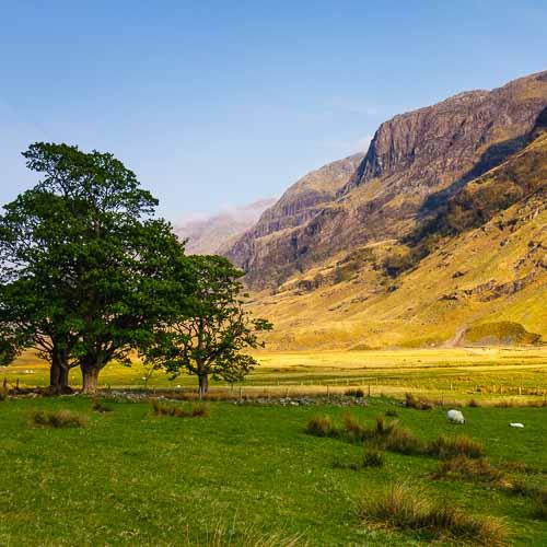 Schottland_9
